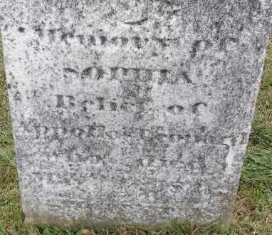 LEONARD, SOPHIA - Hampden County, Massachusetts | SOPHIA LEONARD - Massachusetts Gravestone Photos