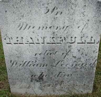 LEONARD, THANKFULL - Hampden County, Massachusetts | THANKFULL LEONARD - Massachusetts Gravestone Photos