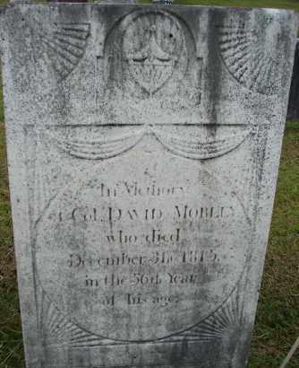 MORLEY (RW), DAVID - Hampden County, Massachusetts | DAVID MORLEY (RW) - Massachusetts Gravestone Photos