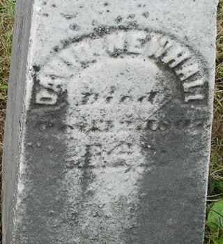 NEWHALL, DAVID - Hampden County, Massachusetts | DAVID NEWHALL - Massachusetts Gravestone Photos