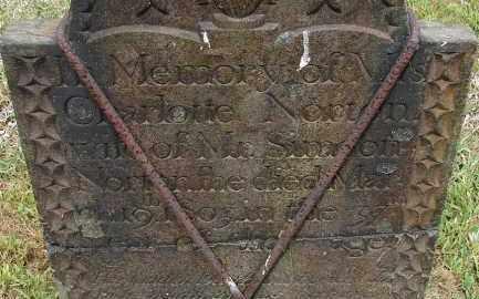 NORTON, CHARLOTTE - Hampden County, Massachusetts | CHARLOTTE NORTON - Massachusetts Gravestone Photos