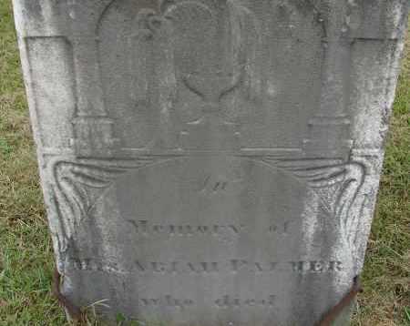 PALMER, ABIAH (MRS.) - Hampden County, Massachusetts   ABIAH (MRS.) PALMER - Massachusetts Gravestone Photos
