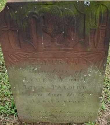 PALMER, ELVIRA M - Hampden County, Massachusetts   ELVIRA M PALMER - Massachusetts Gravestone Photos