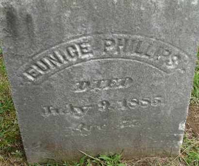 PHILLIPS, EUNICE - Hampden County, Massachusetts | EUNICE PHILLIPS - Massachusetts Gravestone Photos