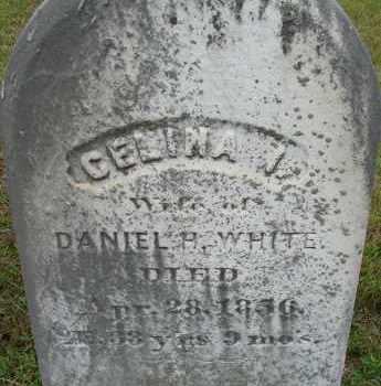 WHITE, CELINA I - Hampden County, Massachusetts | CELINA I WHITE - Massachusetts Gravestone Photos