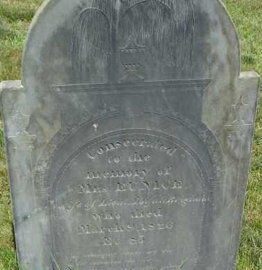 WILLIS, EUNICE - Middlesex County, Massachusetts | EUNICE WILLIS - Massachusetts Gravestone Photos