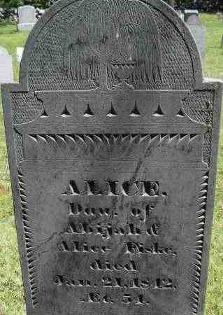 FISKE, ALICE - Middlesex County, Massachusetts | ALICE FISKE - Massachusetts Gravestone Photos