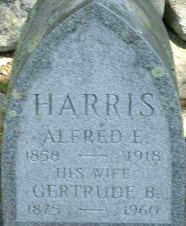 HARRIS, ALFRED E - Middlesex County, Massachusetts | ALFRED E HARRIS - Massachusetts Gravestone Photos