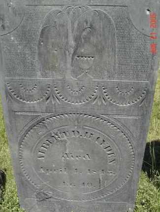 HAYDEN, ALBERT D - Middlesex County, Massachusetts | ALBERT D HAYDEN - Massachusetts Gravestone Photos