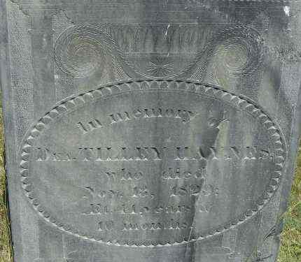 HAYNES, TILLEY - Middlesex County, Massachusetts   TILLEY HAYNES - Massachusetts Gravestone Photos