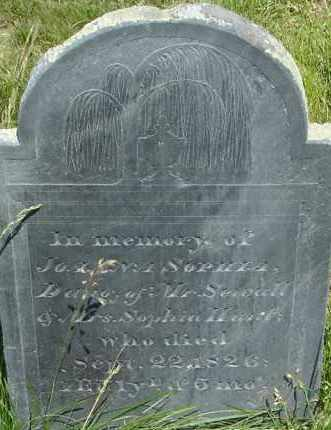 HUNT, JOANNA SOPHIA - Middlesex County, Massachusetts | JOANNA SOPHIA HUNT - Massachusetts Gravestone Photos