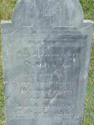 JONES, NANCY - Middlesex County, Massachusetts | NANCY JONES - Massachusetts Gravestone Photos