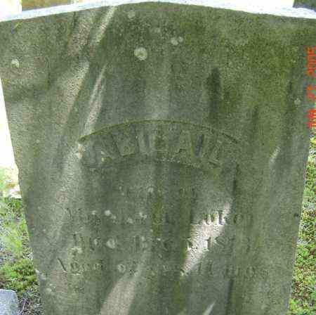 LOKER, ABIGAIL - Middlesex County, Massachusetts | ABIGAIL LOKER - Massachusetts Gravestone Photos