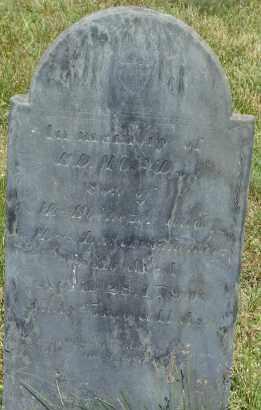 PARMENTER, EDMUND - Middlesex County, Massachusetts | EDMUND PARMENTER - Massachusetts Gravestone Photos