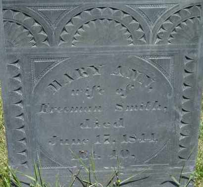 SMITH, MARY ANN - Middlesex County, Massachusetts | MARY ANN SMITH - Massachusetts Gravestone Photos