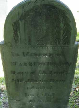 TRAIN, HARRIOT - Middlesex County, Massachusetts | HARRIOT TRAIN - Massachusetts Gravestone Photos