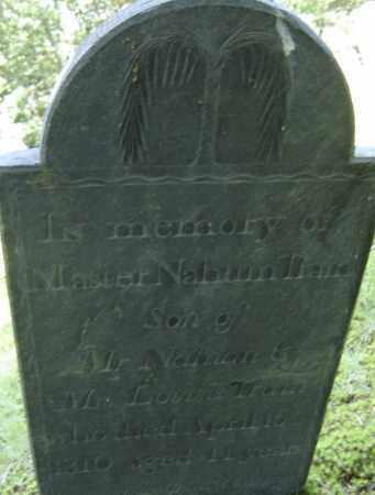 TRAIN, NAHUM - Middlesex County, Massachusetts | NAHUM TRAIN - Massachusetts Gravestone Photos
