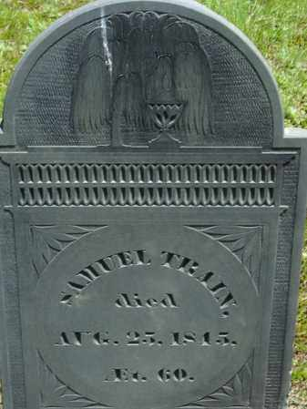 TRAIN, SAMUEL - Middlesex County, Massachusetts | SAMUEL TRAIN - Massachusetts Gravestone Photos