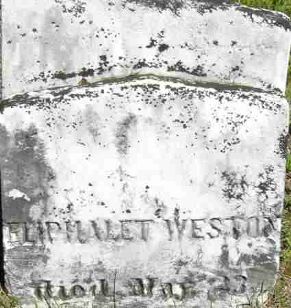 WESTON, ELIPHALET - Middlesex County, Massachusetts | ELIPHALET WESTON - Massachusetts Gravestone Photos
