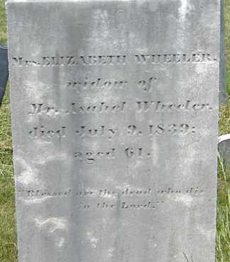 WHEELER, ELIZABETH - Middlesex County, Massachusetts | ELIZABETH WHEELER - Massachusetts Gravestone Photos