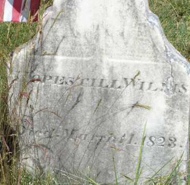 WILLIS, HOPESTILL - Middlesex County, Massachusetts | HOPESTILL WILLIS - Massachusetts Gravestone Photos