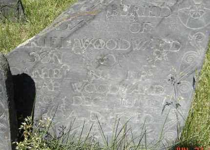 WOODWARD, DANIEL - Middlesex County, Massachusetts | DANIEL WOODWARD - Massachusetts Gravestone Photos